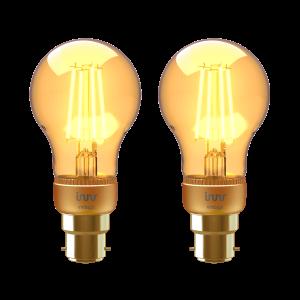 BF 263-2 B22 Filament bulb vintage 2-pack