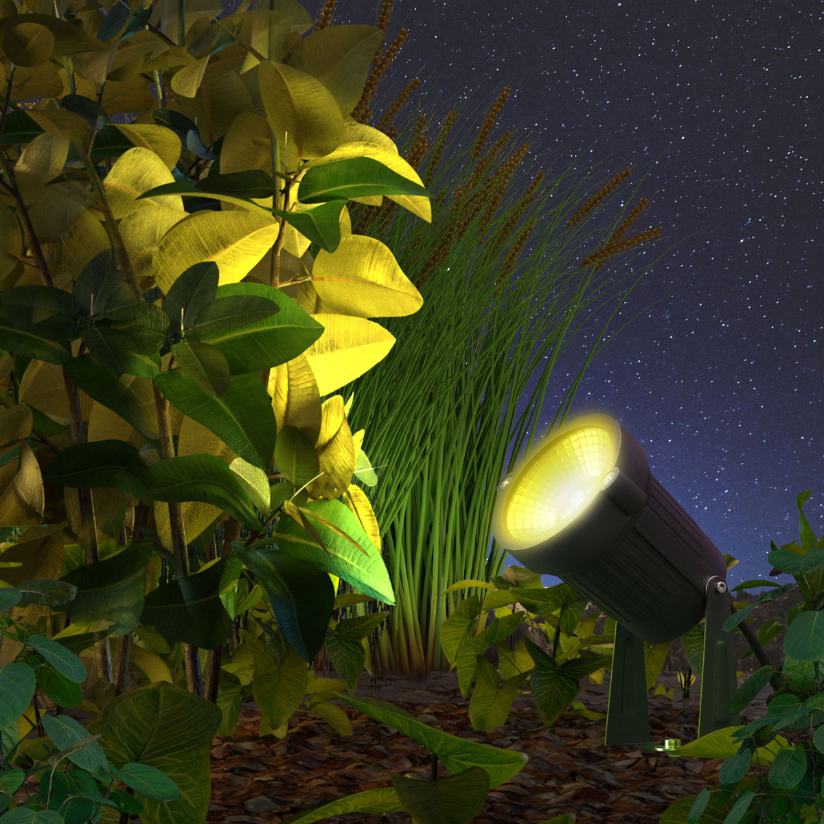 Outdoor Spot Light Colour Garden